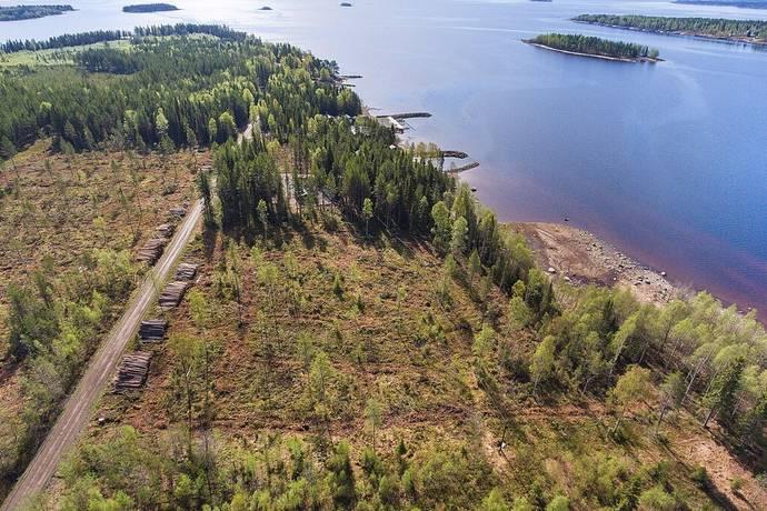 Bild: tomt på Mjöfjärden, Luleå kommun Mjöfjärden