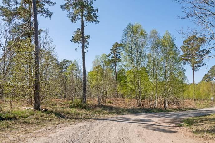 Bild: tomt på Rådjursvägen 9, Gotlands kommun Gnisvärd - Tofta - Västra Gotland