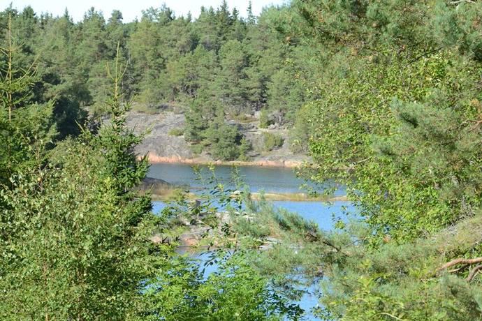 Bild: tomt på Benövägen 4, Östhammars kommun Gräsö