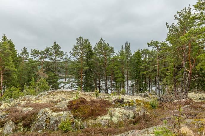 Bild: tomt på Havsuddsvägen 7, Norrtälje kommun Singö