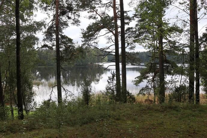 Bild: tomt på Borganäs 17, Tranemo kommun