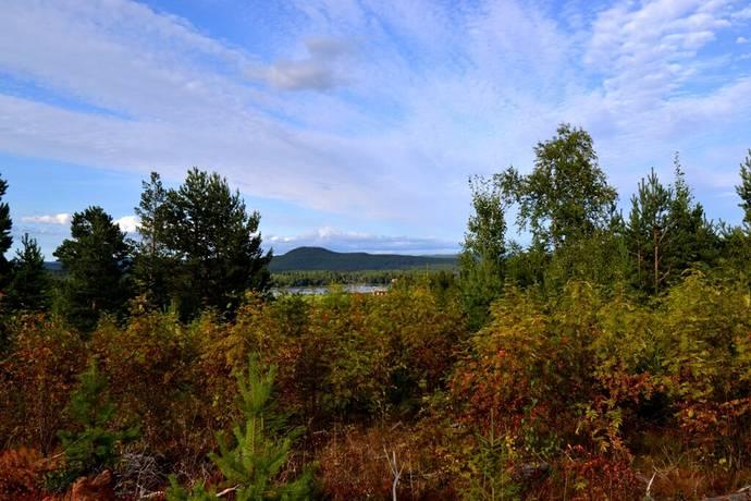 Bild: gård/skog på Svedenvägen, Ljusdals kommun Järvsö, Skridsvik