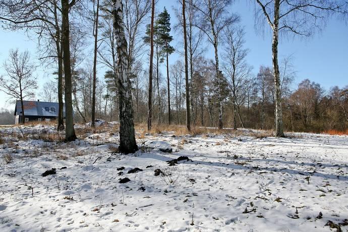 Bild: tomt på Kaveldunsvägen 56-7, Kävlinge kommun Hofterup