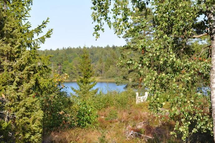 Bild: tomt på Fagerviken Brännskärsvägen 12, Tierps kommun Fagerviken