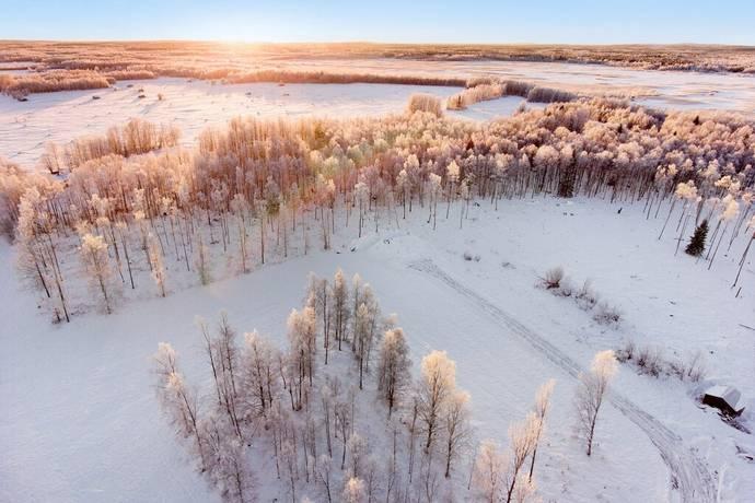 Bild: tomt på Markskogsvägen, Luleå kommun Persön