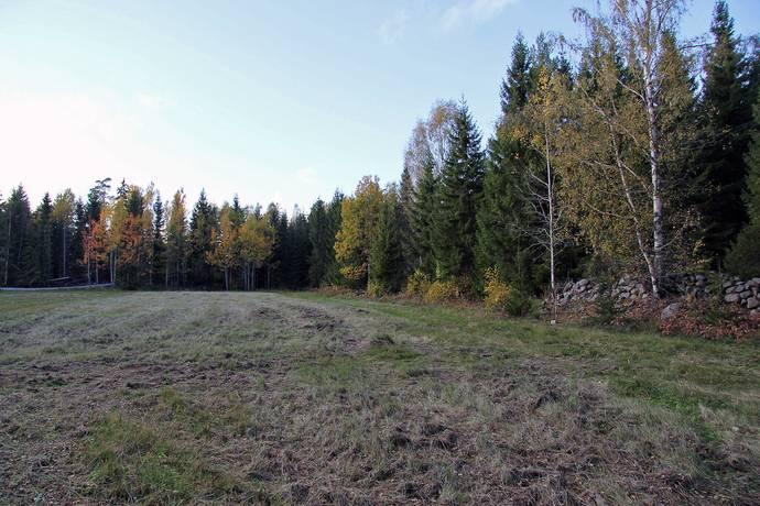 Bild: gård/skog på Roslags-Kulla, Norrtälje kommun Roslags-Kulla