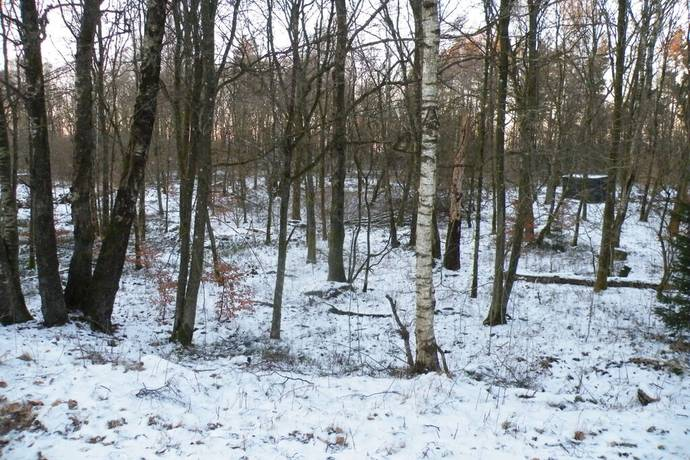 Bild: tomt på Hallandsås börkered 326, Laholms kommun Hallandsåsen