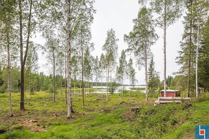 Bild: tomt på Burön  221, Skellefteå kommun Bureå