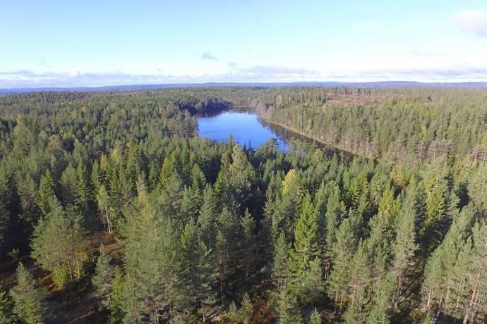 Bild: gård/skog på Knöstad, Säffle kommun Knöstad