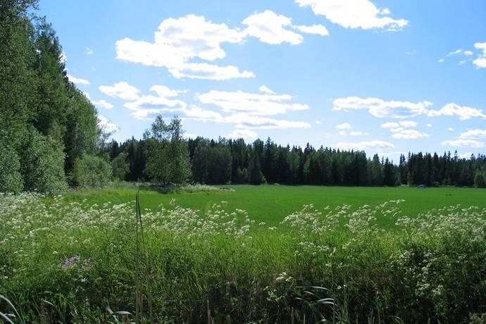 Bild: tomt på Mjölkörtsvägen, Strängnäs kommun Tosterön